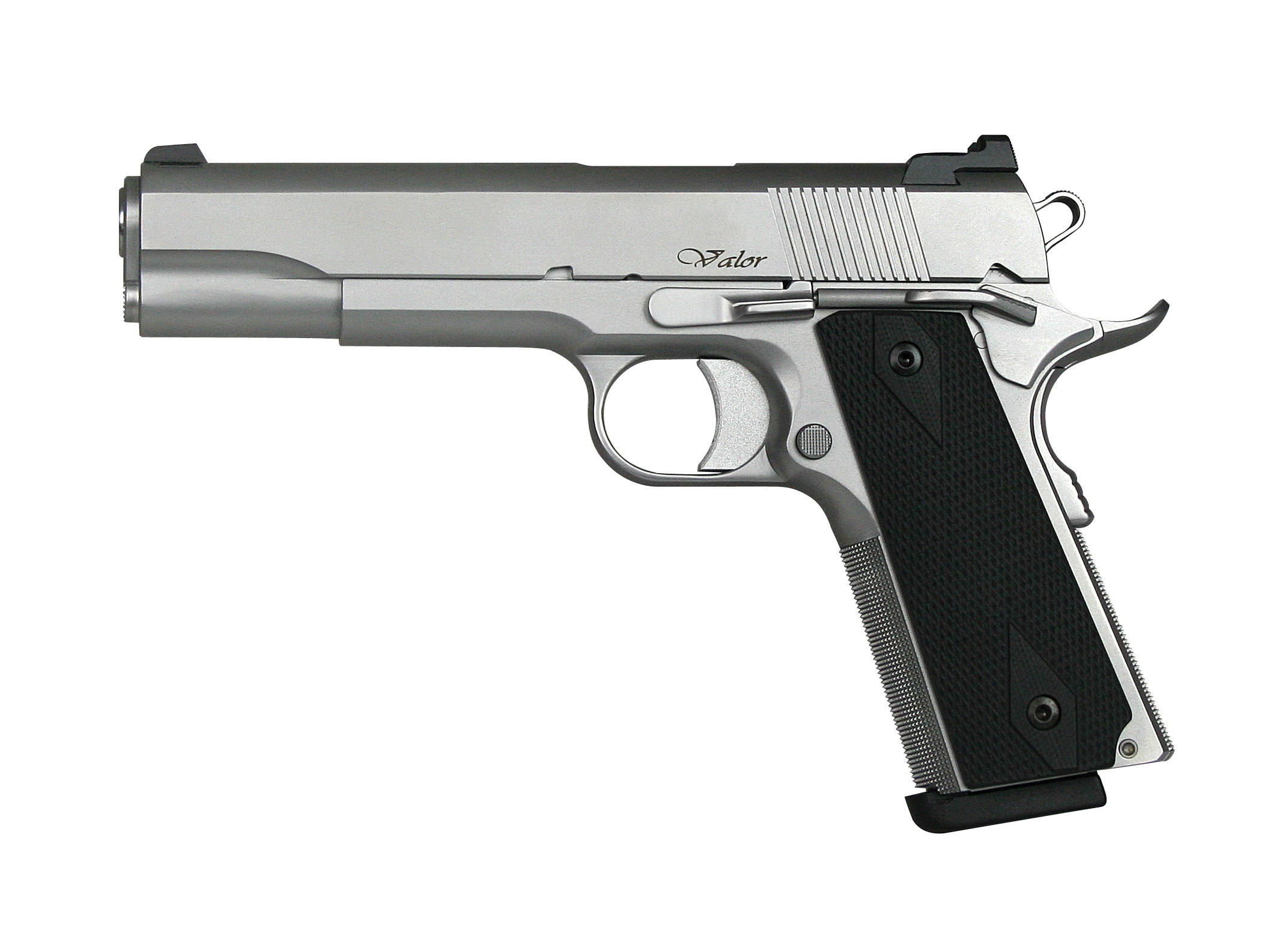 Dan Wesson Valor stainless photo