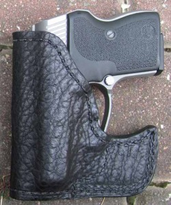 Guardian 380 in holster photo
