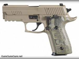 The P229 Scorpion.