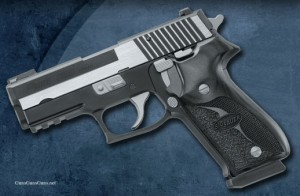 The P220 Carry Equinox from the left.