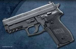 The P229 Nitron.