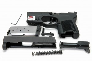 P290 disassembled photo
