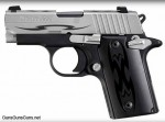 The P238 Tribal.