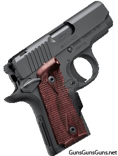 Kimber Micro RCP right side photo