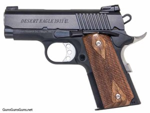 The Desert Eagle 1911 U from the left.