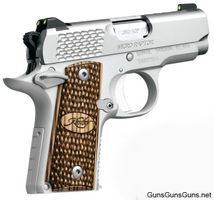 Kimber Micro Raptor photo