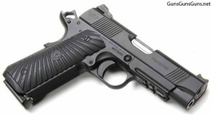 Wilson Combat Protector Professional right side photo