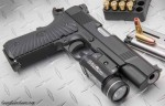 Wilson Combat Protector right side photo